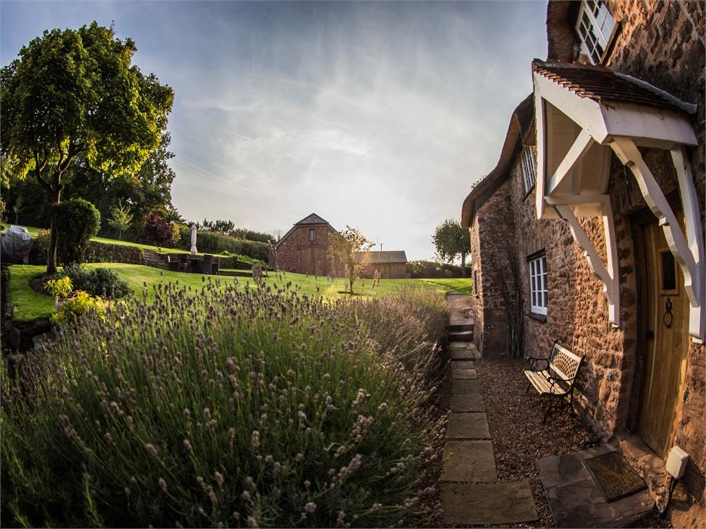 Domek z ogrodem, w tle ławka i piękny ogród